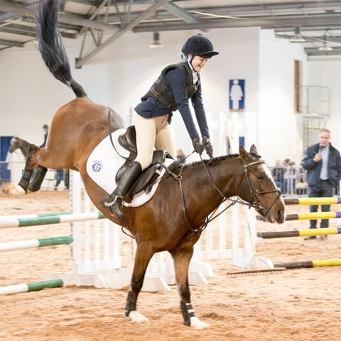 Show Jumping at YEC