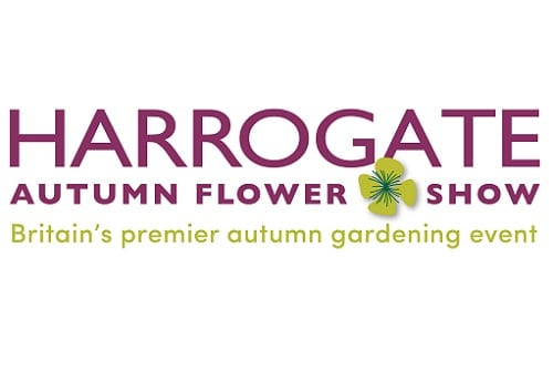 Harrogate Autumn Flower Show 2019
