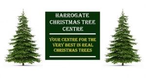 Harrogate Chritsmas Tree Sales