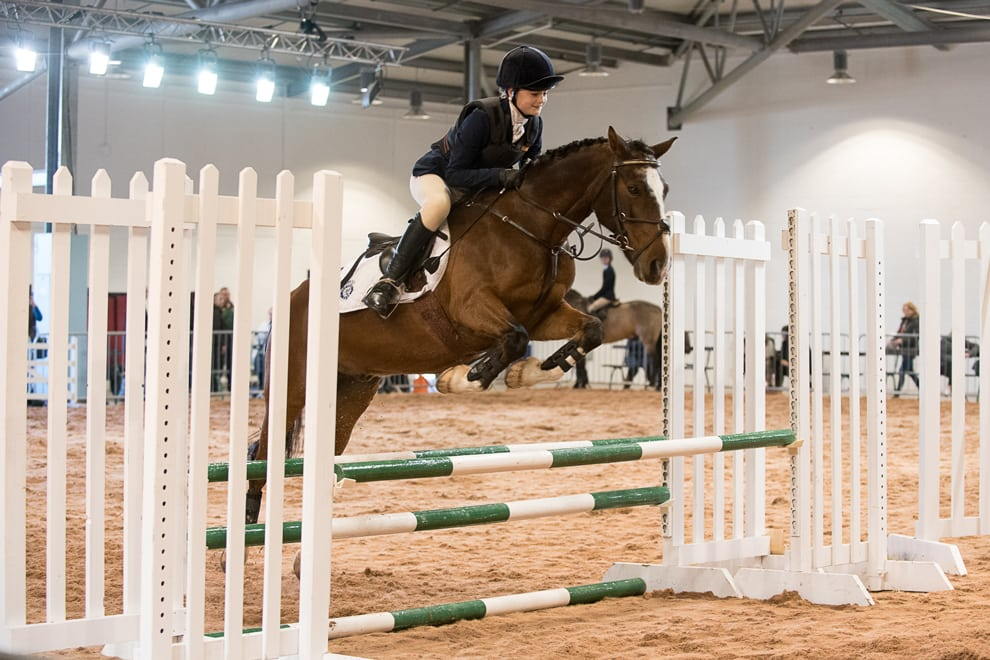 YEC Hall 2 showjumping Live
