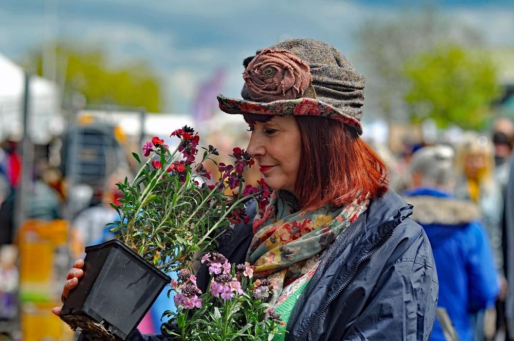 Visiting harrogate flower show